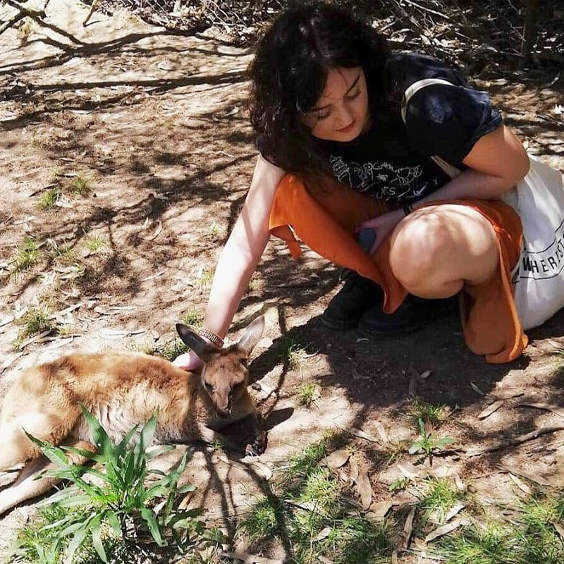 Make friends with the local wildlife during your work placement in Australia